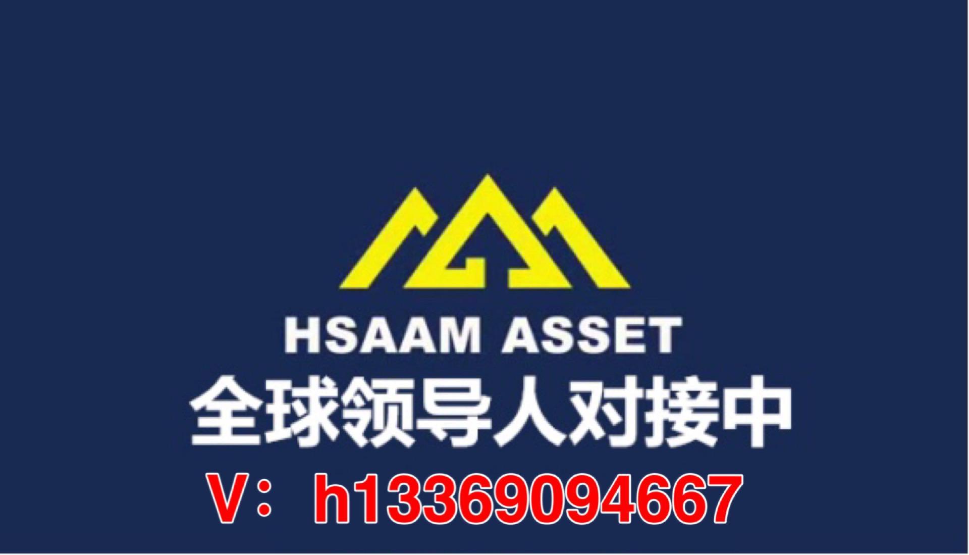 Hsaam ASSET怎么加入?投资多少钱?Hsaam联系全网一手财神